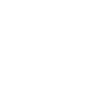 nso icon